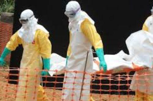 Article : La fièvre hémorragique à virus ébola: une bombe à fragmentation à l'échelle planétaire.